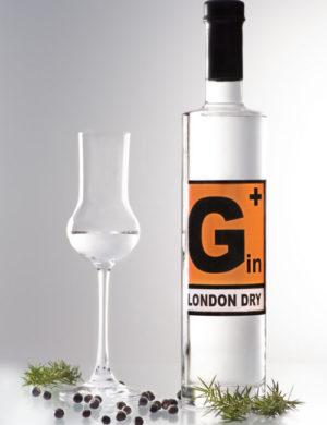 gin-wacholder-1-500x650